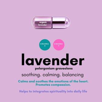Lavender Moodzee Roller Ball