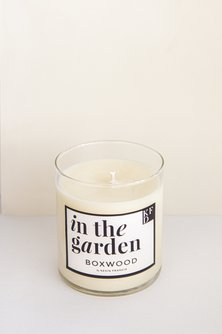 Boxwood Scented Soy Candle