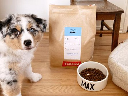 Max: Growing Puppy