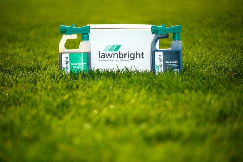 All Natural Lawn Care Subscription